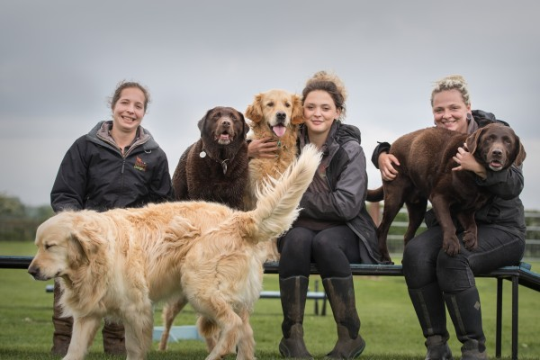 Three female team members sitting with three large dogs on agility walk surface in a field, golden retriever walking in front.